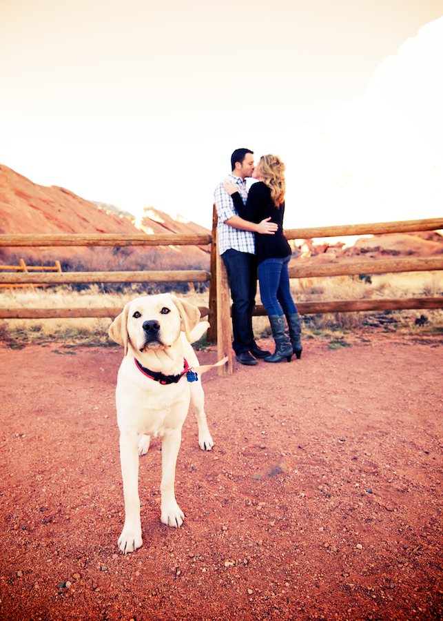 red-rocks-park-morrison-colorado-sunset-fall-engagement-photography-yellow-lab-dog-couple-kissing-fence